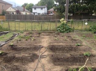 garden_update_may